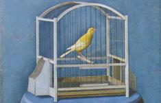 Quadreria 2006 - Antonio Donghi - Il canarino (particolare)