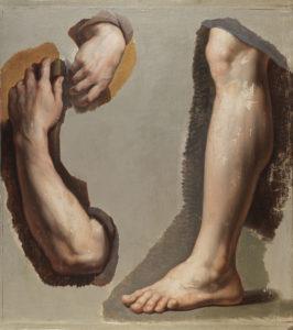 Camuccini: studio per braccio e gamba